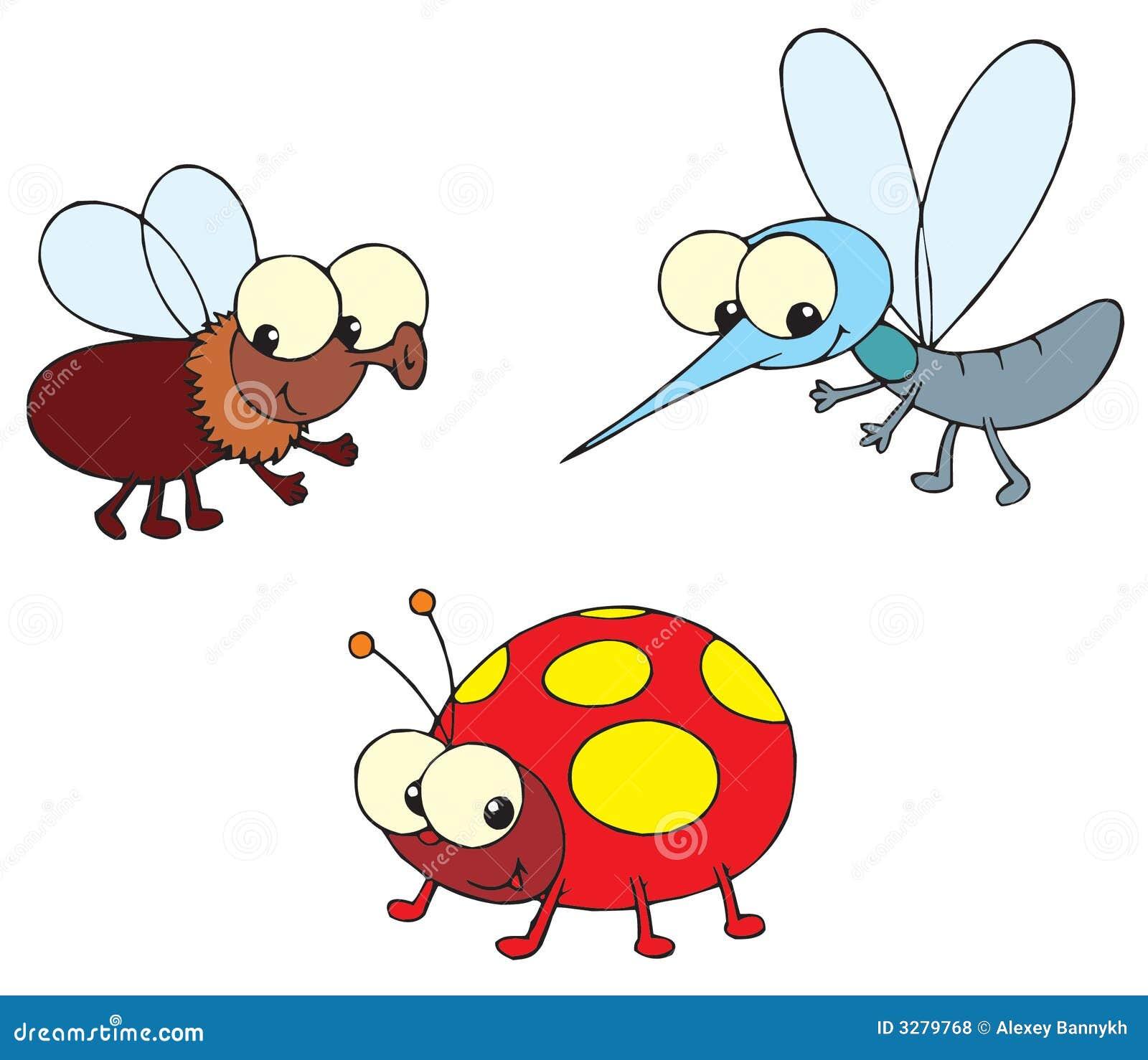 Ladybug, fly and mosquito