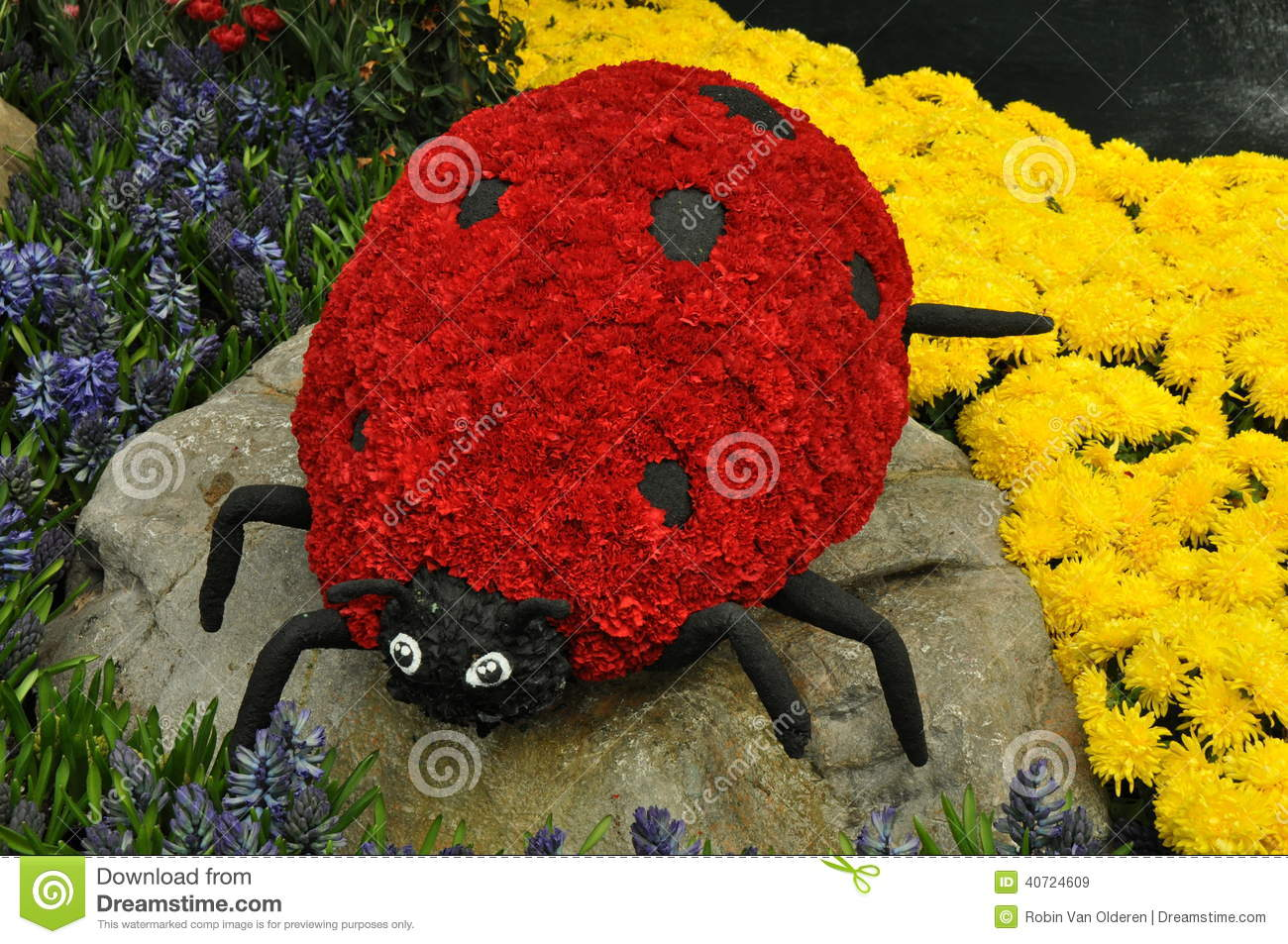 ladybug made from flowers stock image  image of insect