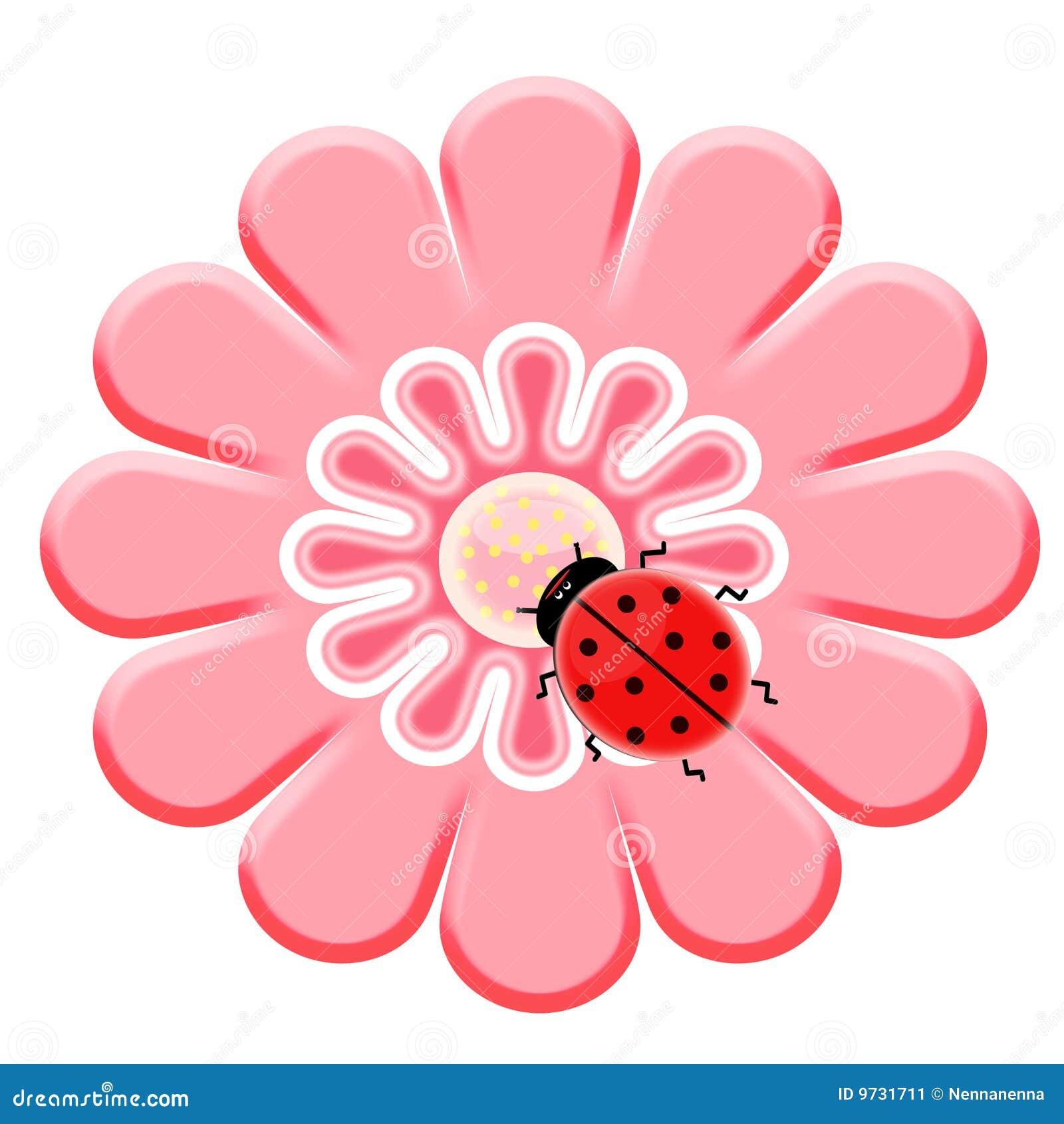 ladybug on the pink flower stock image