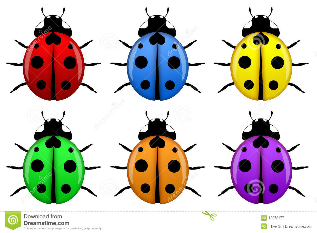 Ladybugs In Different Colors Isolated Stock Illustration ...