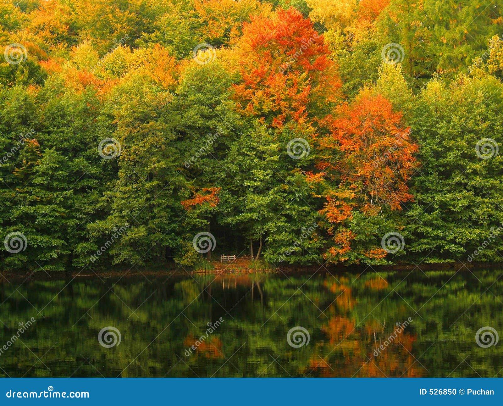 Lago autumn