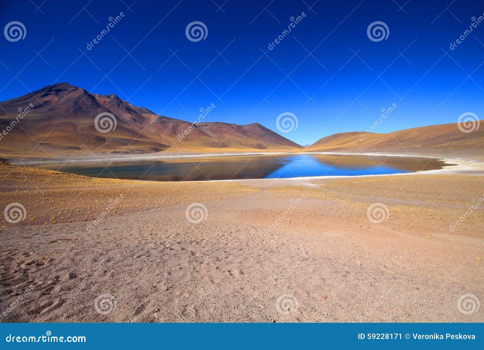 Download Lago bajo el cielo azul imagen de archivo. Imagen de naturalizado - 59228171