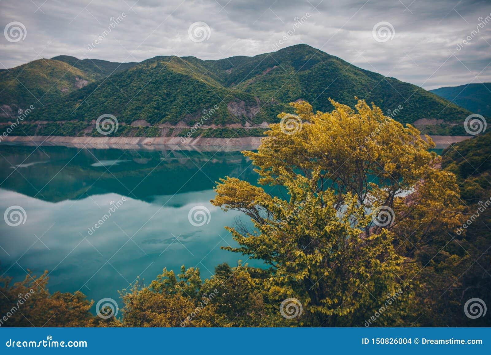 Lago blu e cespuglio giallo in montagne