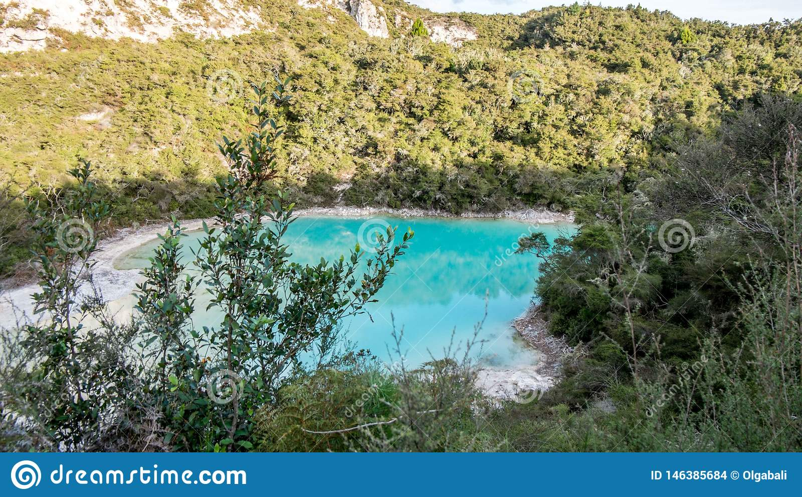 Lago bonito da água azul em Rotorua, Nova Zelândia