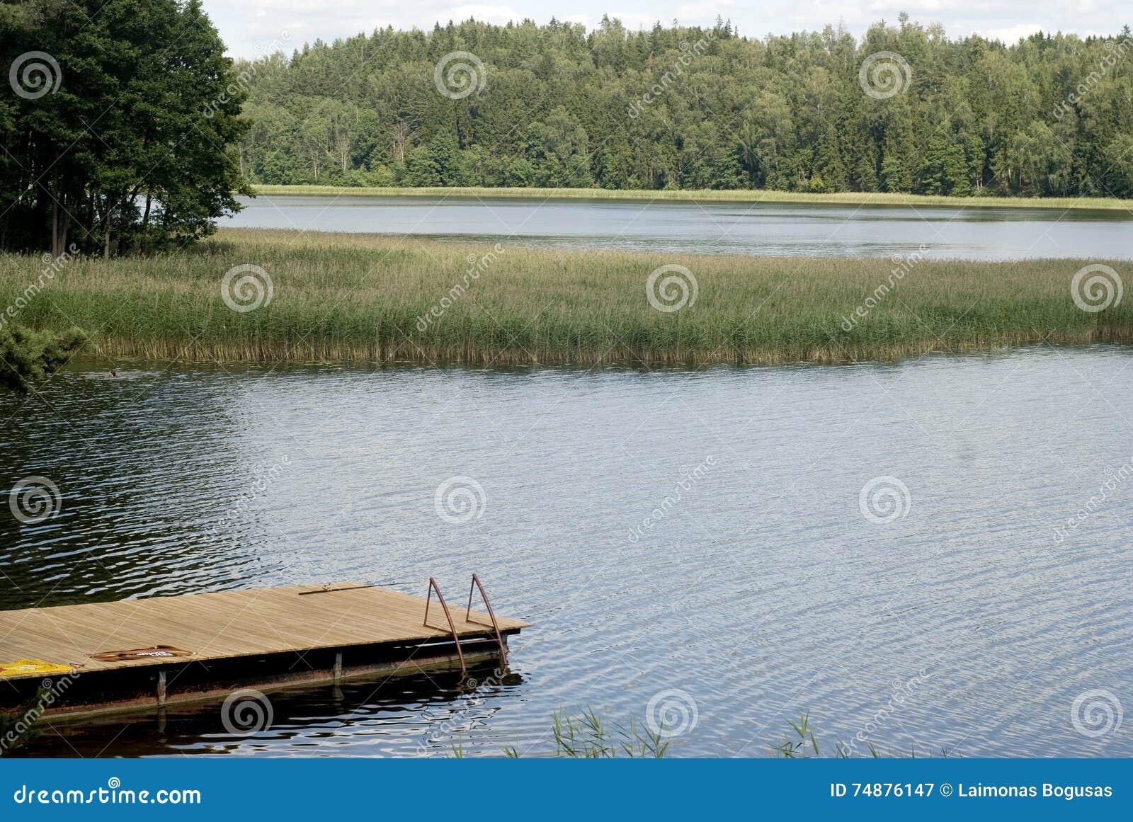 Lago, bosque, puente