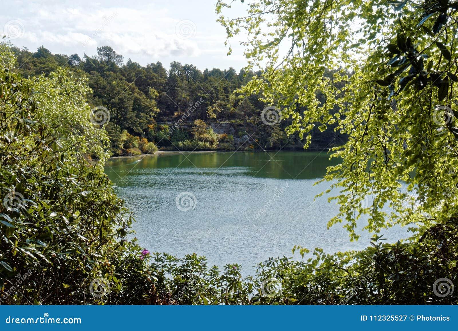 Lago cênico e florestas na associação azul, Dorset, Inglaterra