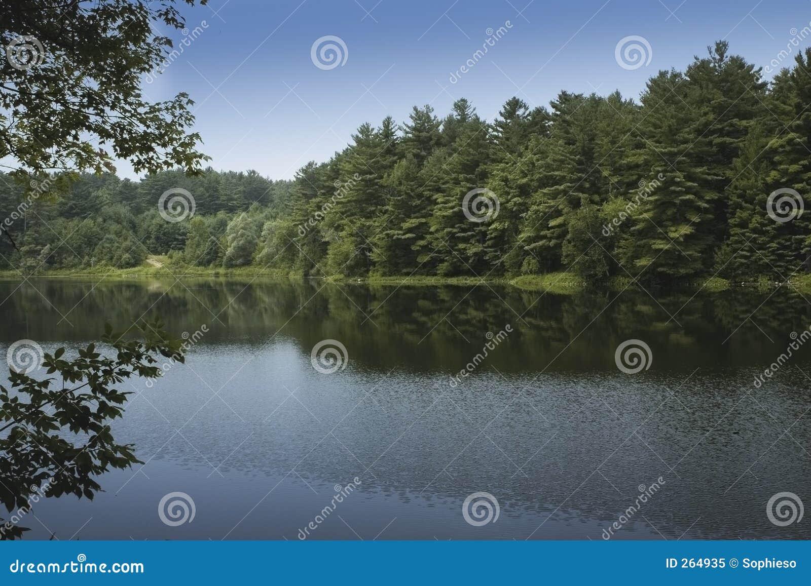 Lago calmo Vermont