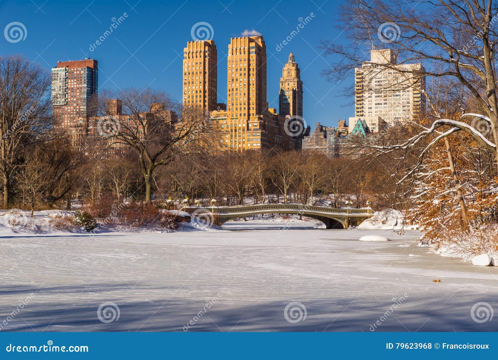 Lago central Park e ponte no inverno, New York da curva