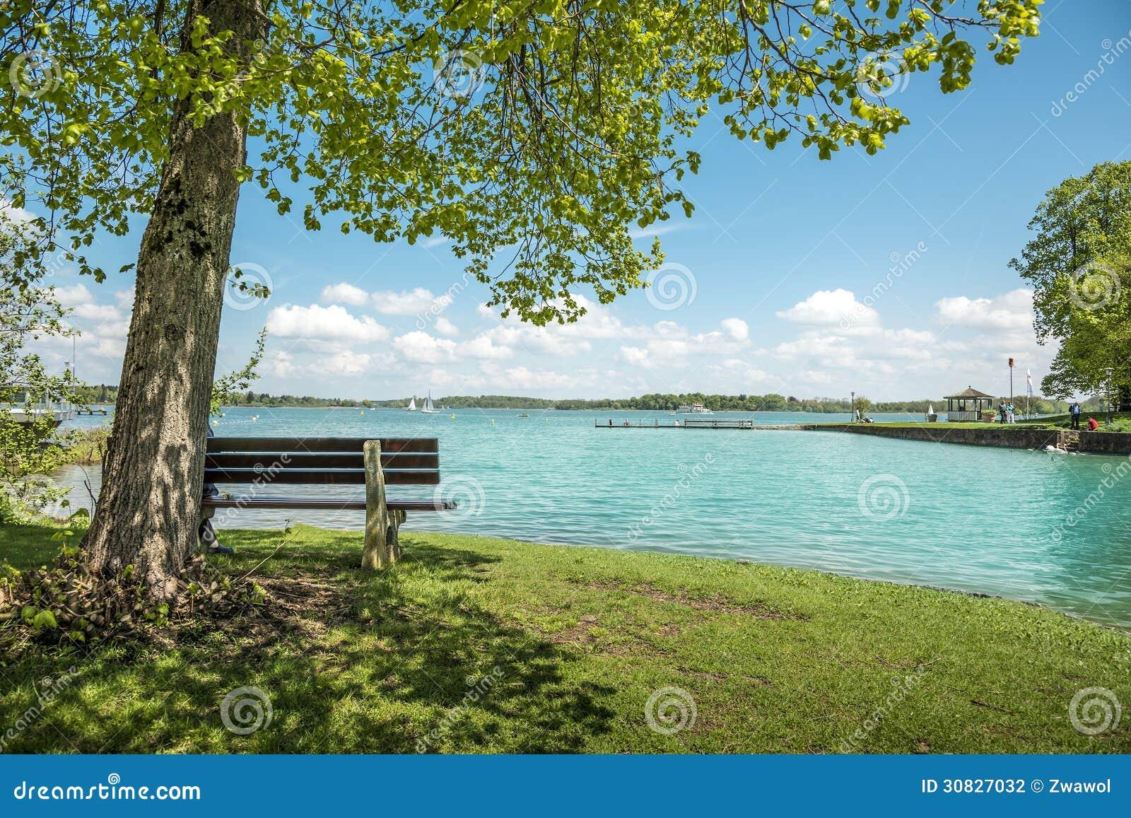 Lago Chiemsee con l albero ed il banco