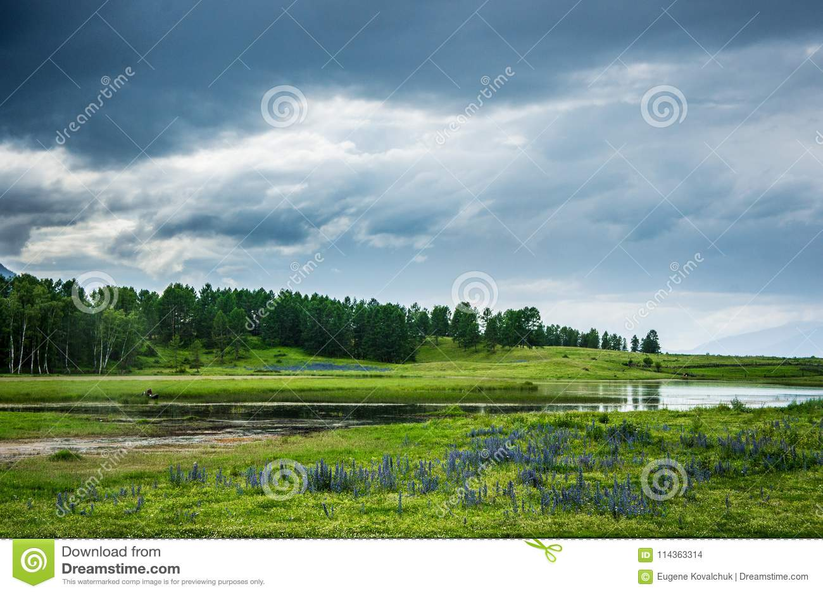 Lago con un pescatore ed i fiori