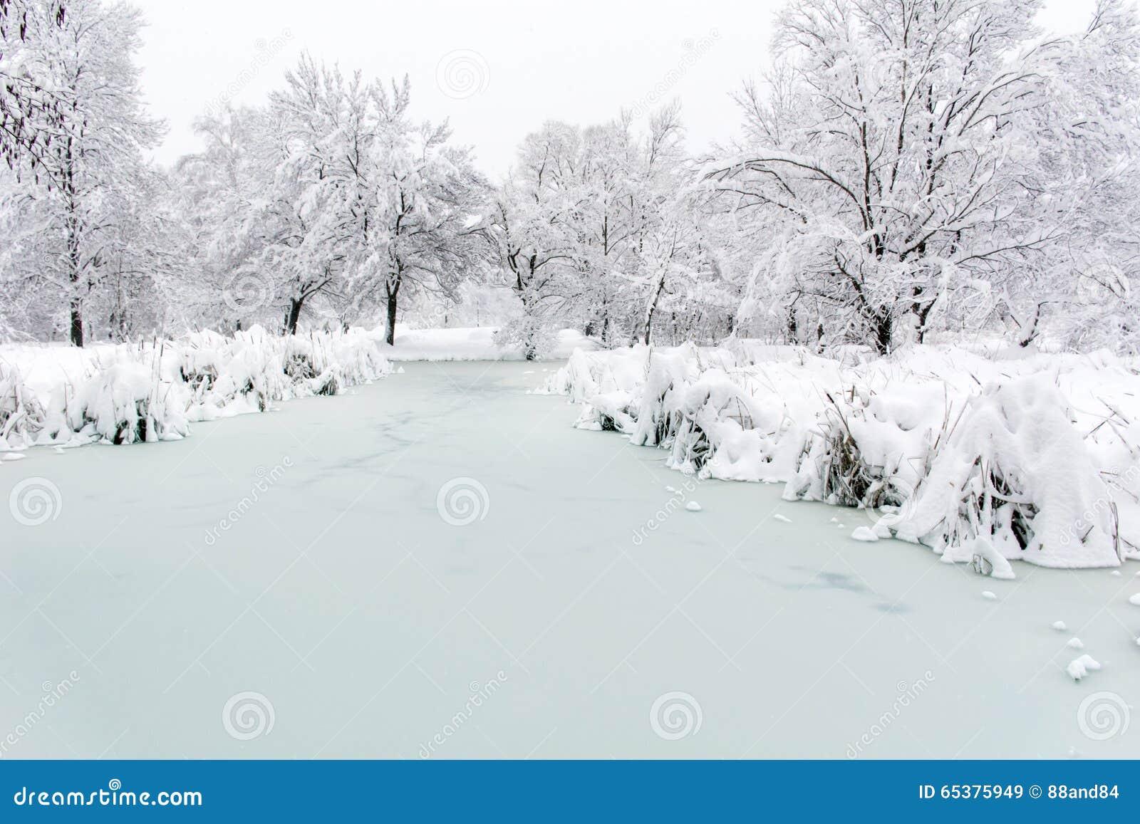 Lago congelado invierno hermoso Sofía, Bulgaria