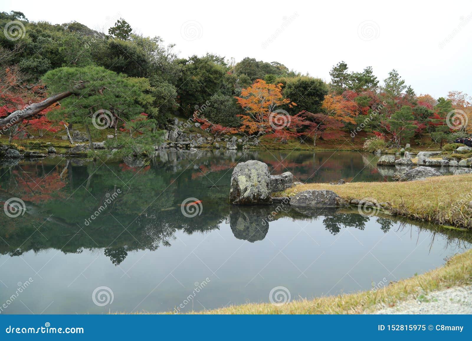 Lago e árvore no outono em Japão