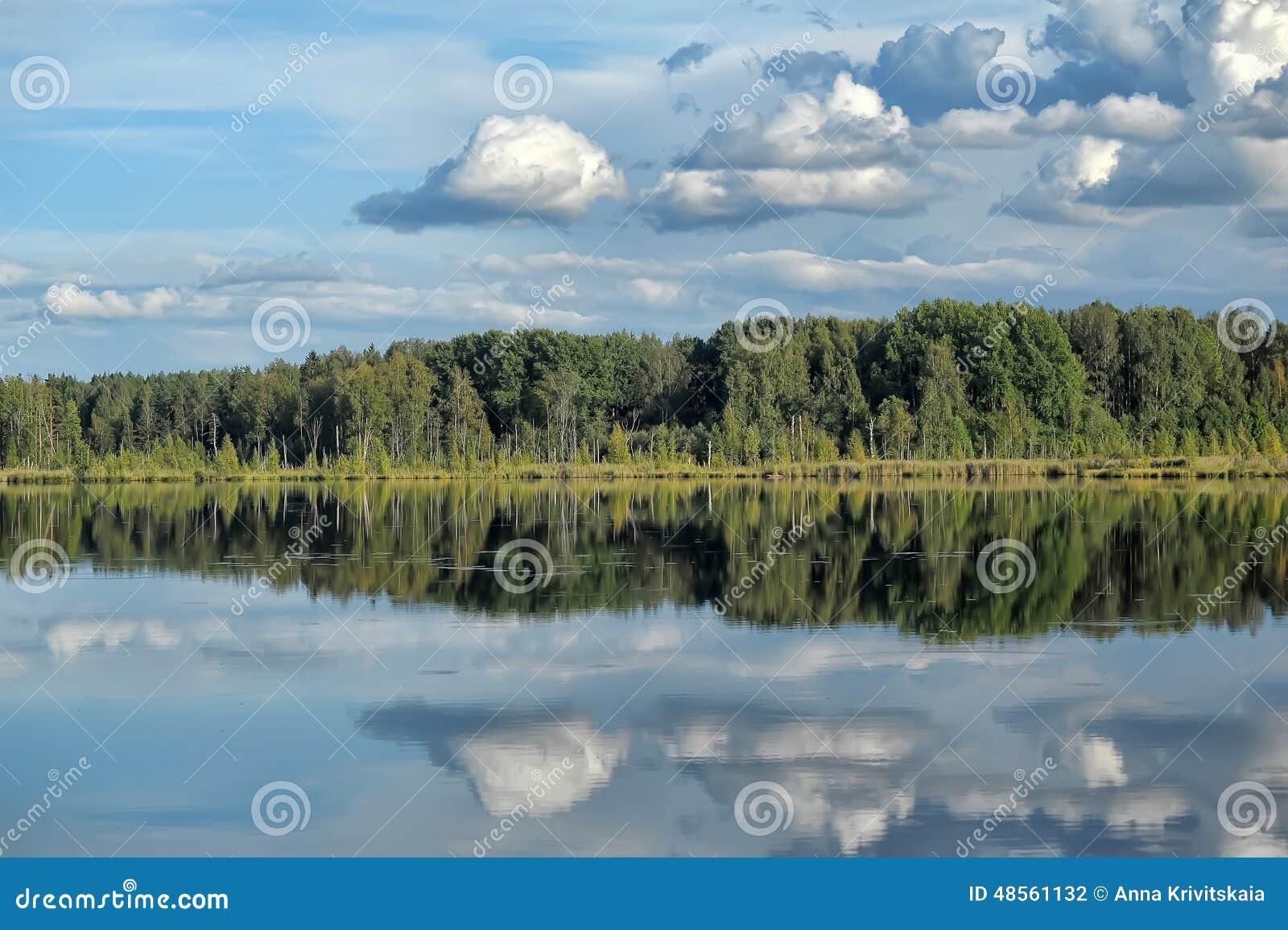 Lago e floresta