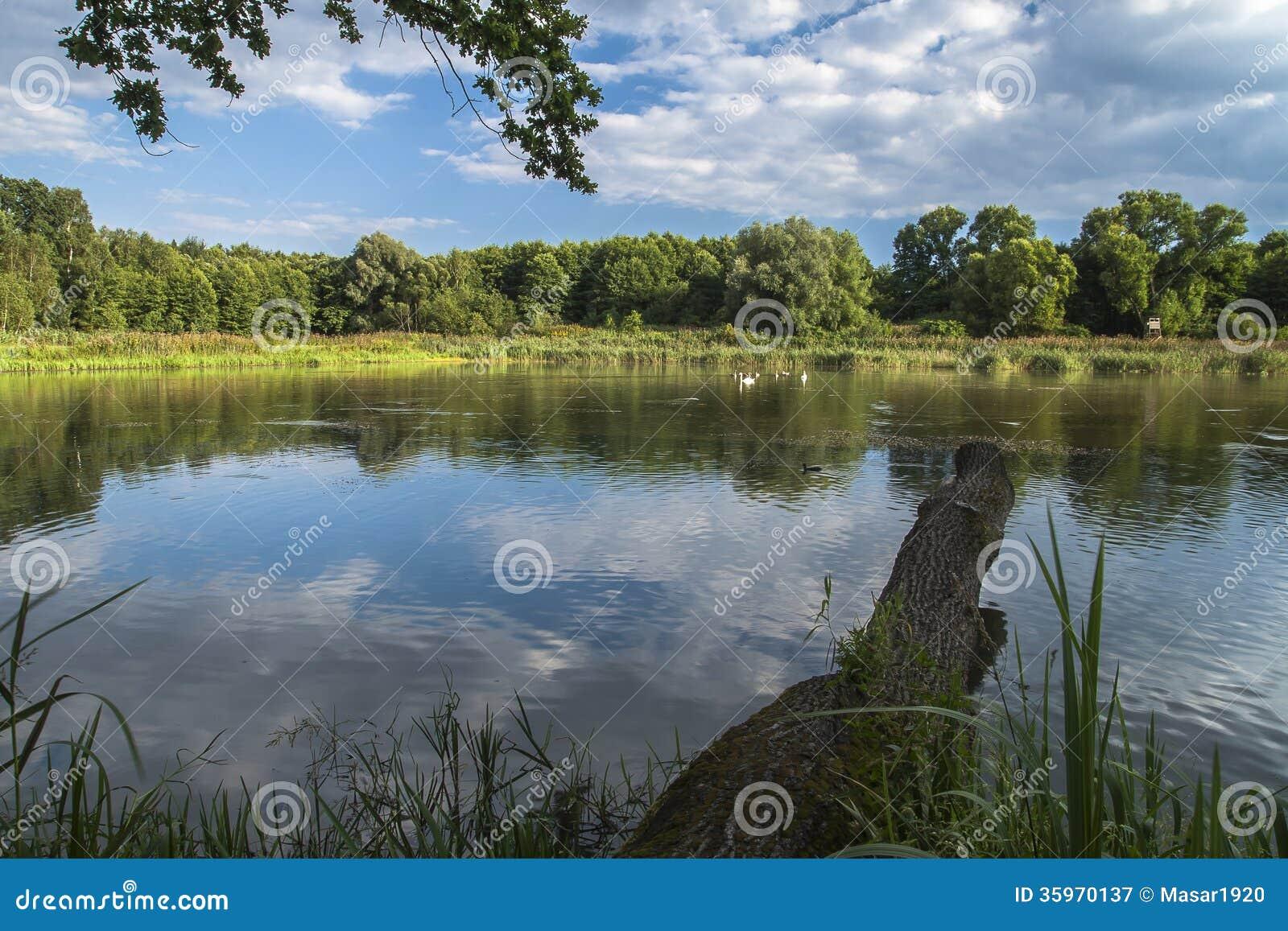 Lago en Chudów