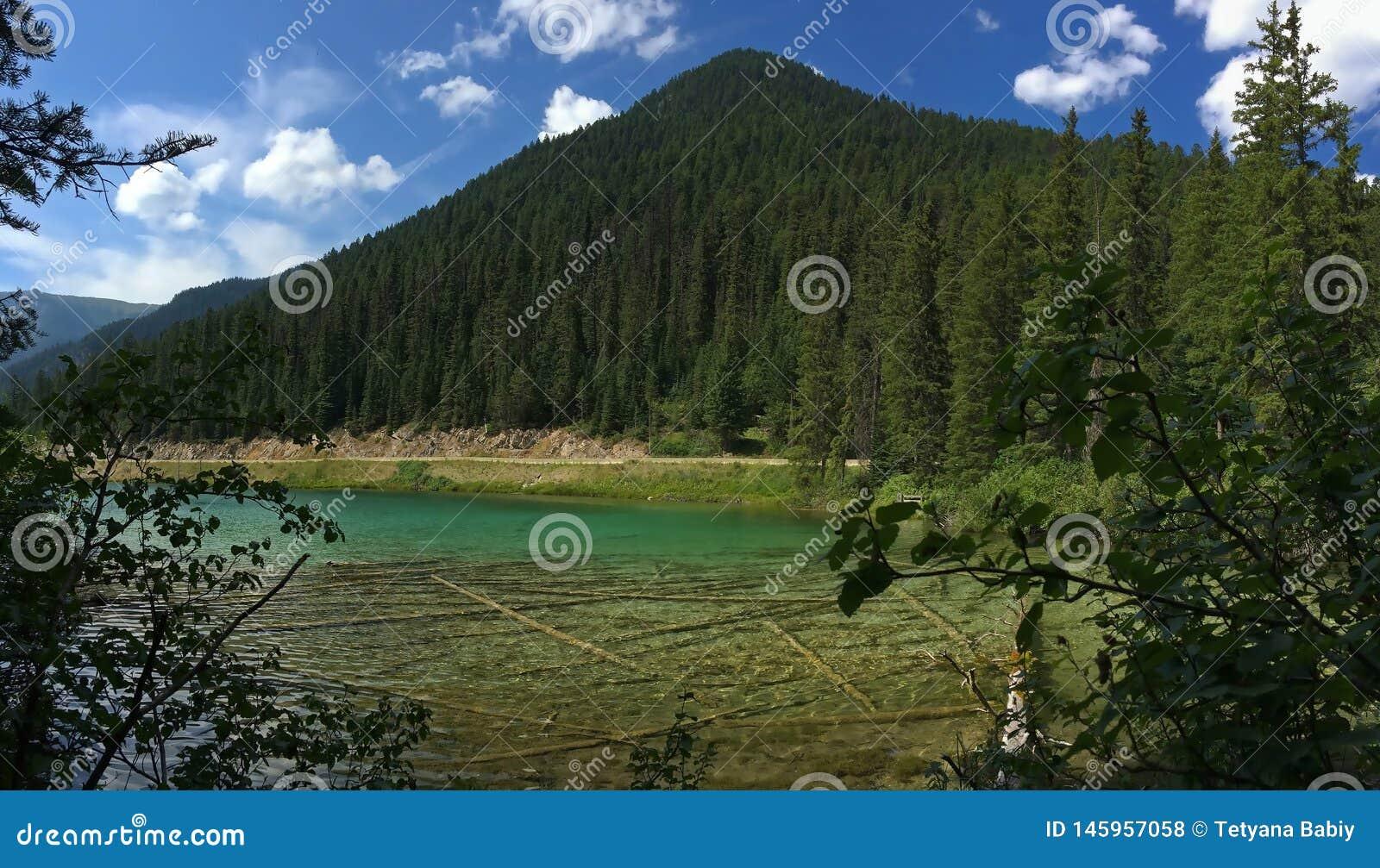 Lago en el canadiense Rocky Mountains - el parque nacional de Kootenay