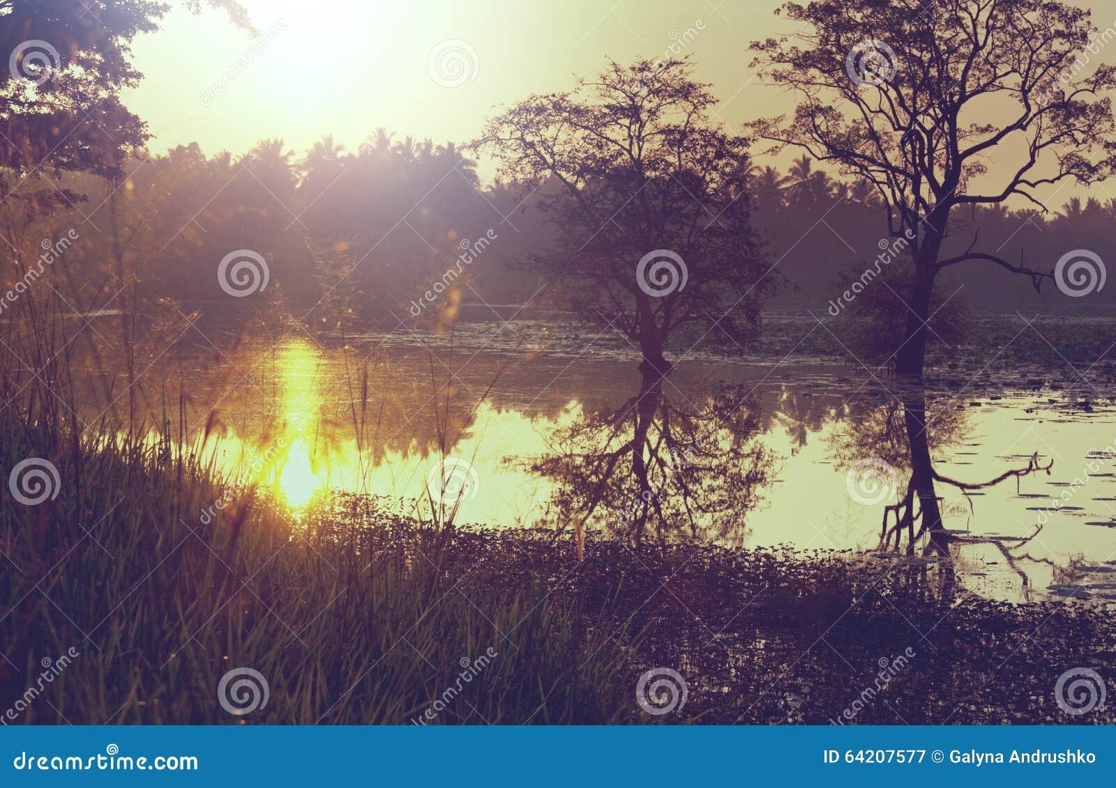 Lago en Sri Lanka