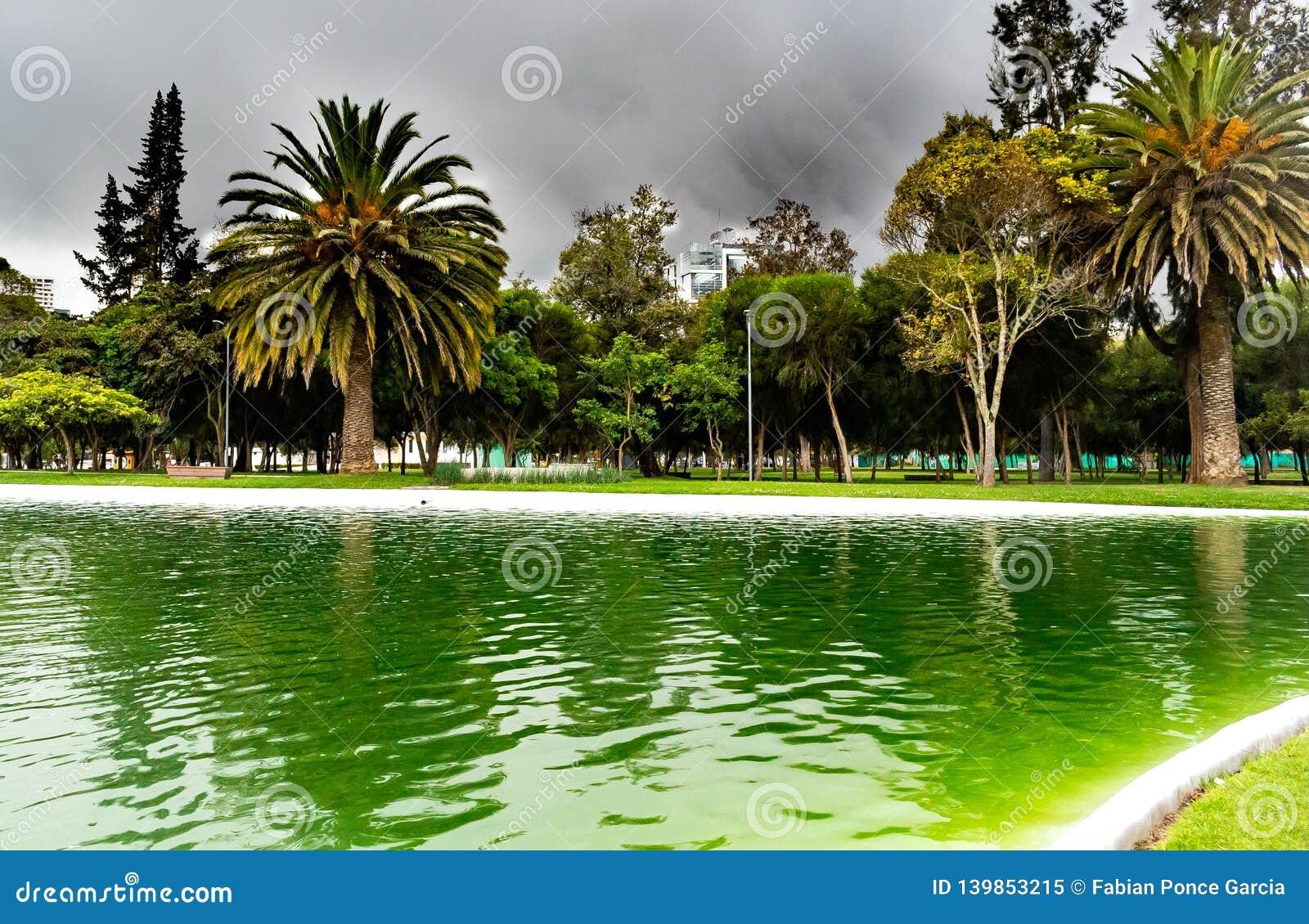 Lago en un parque con las nubes oscuras