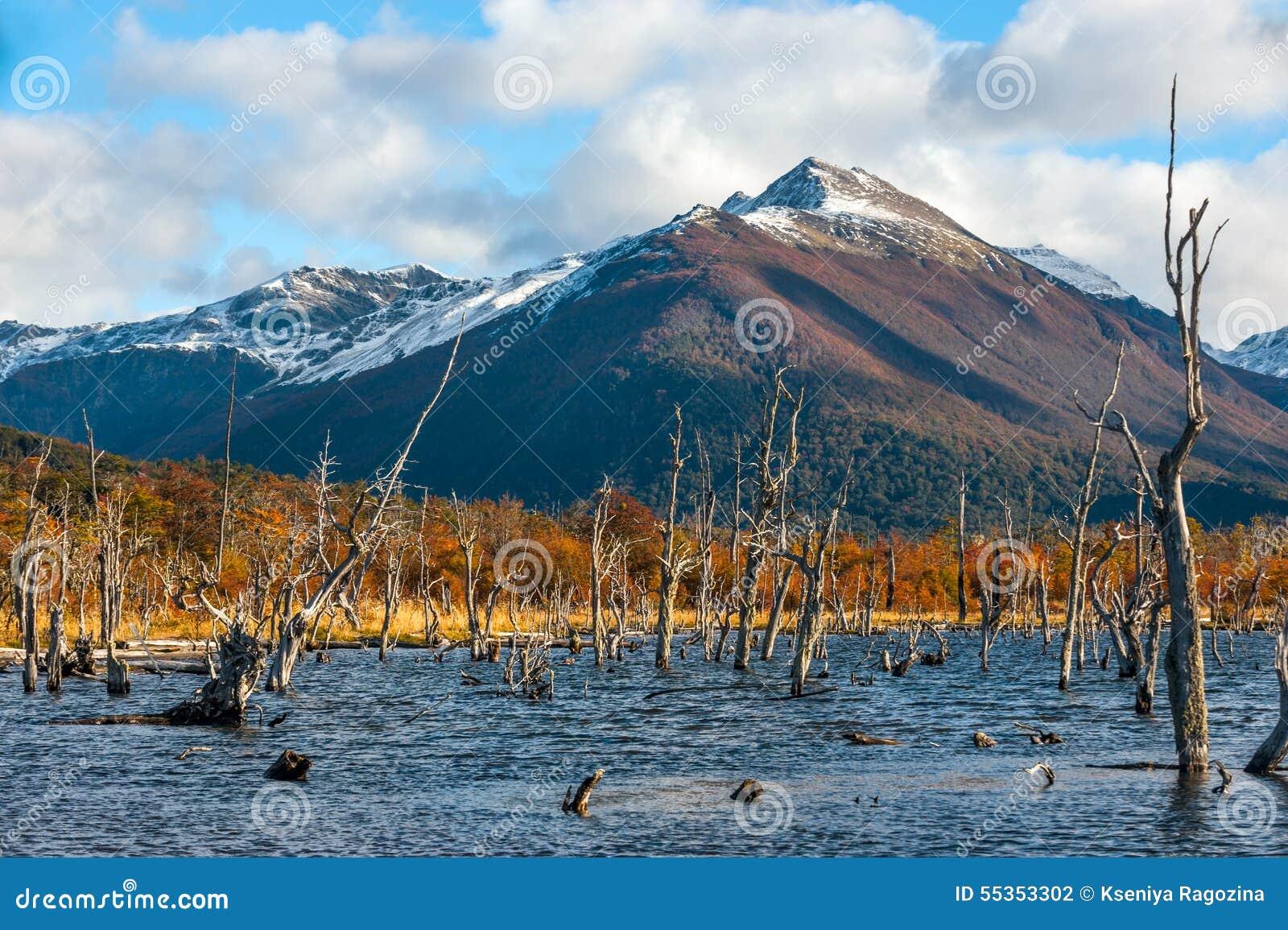 Lago Escondido, Isla Grande de Tierra del Fuego, Argentina