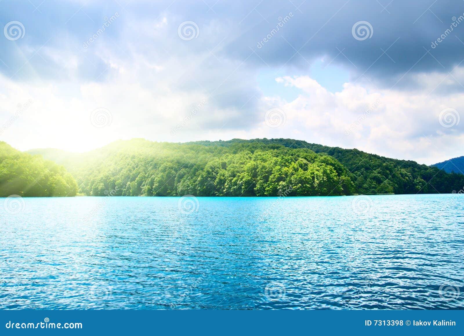 Lago in foresta