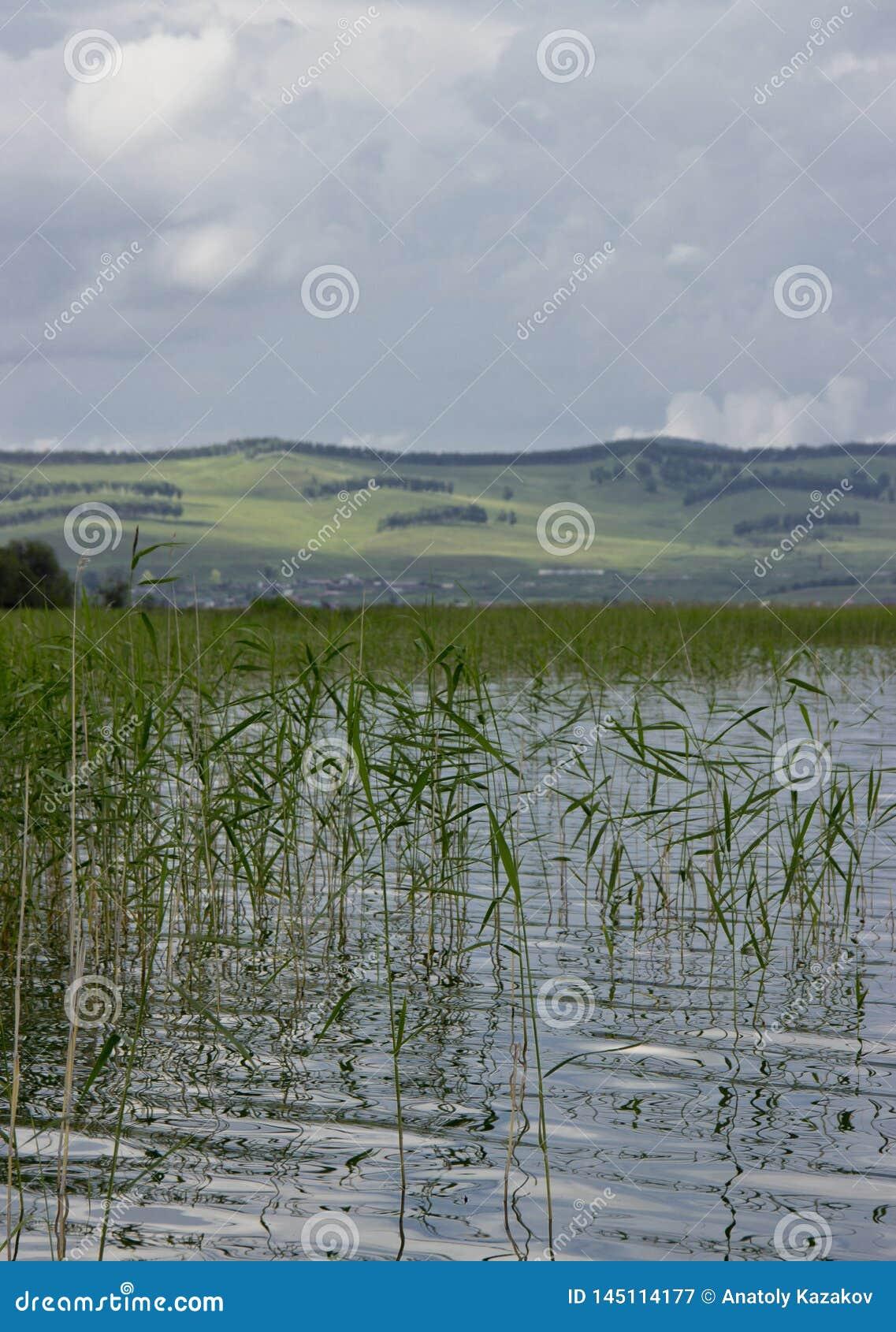 Lago grande en Siberia