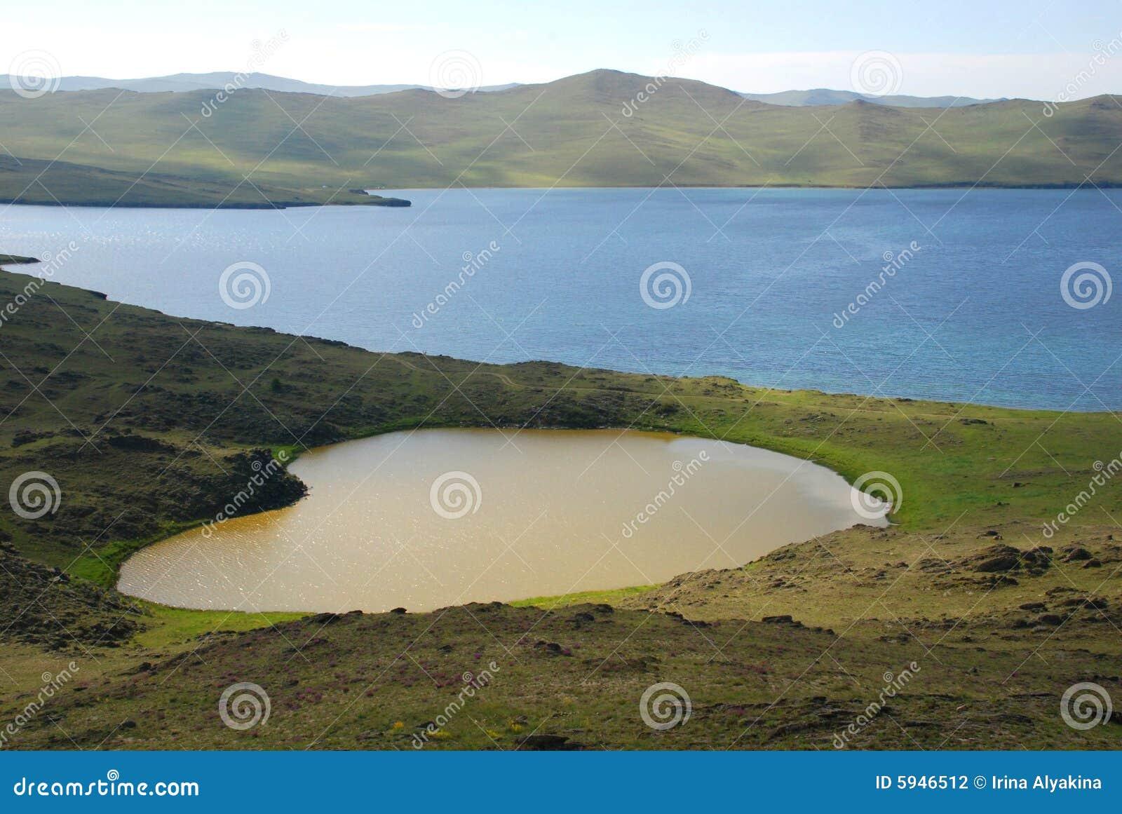 Lago heart