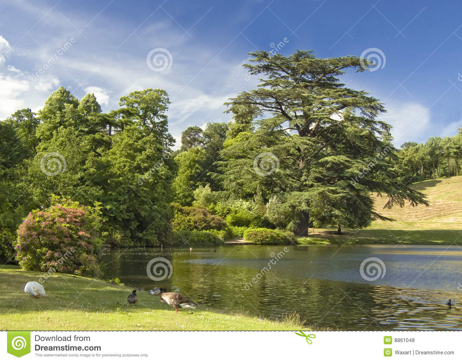 Lago hermoso en campo inglés