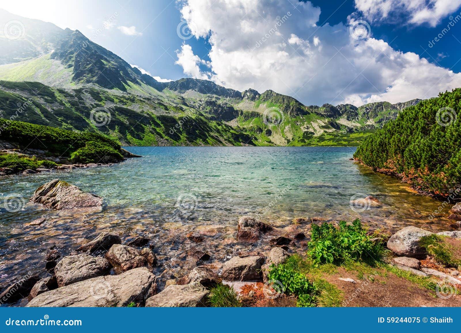 Lago hermoso en las montañas de Tatra