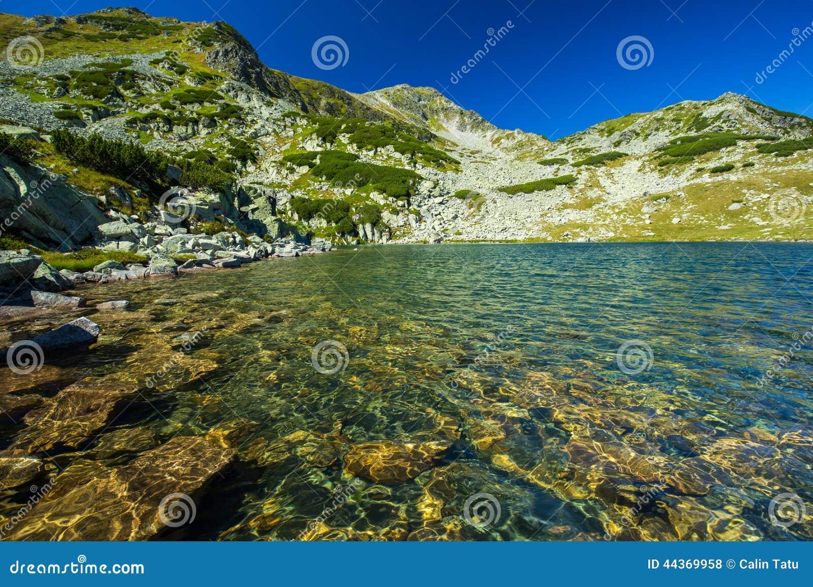 Lago incontaminato del ghiacciaio nelle alpi
