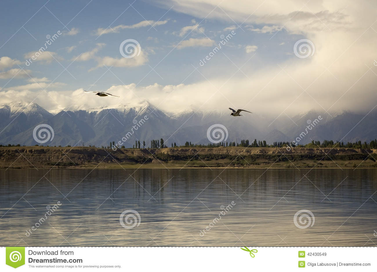 Lago Issyk-Kul en Kirguistán, Asia Central