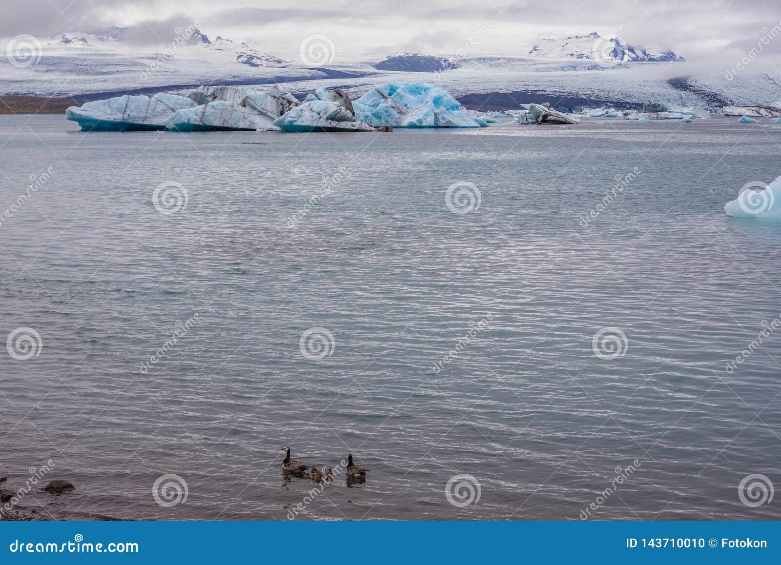 Lago Jokulsarlon in Islanda