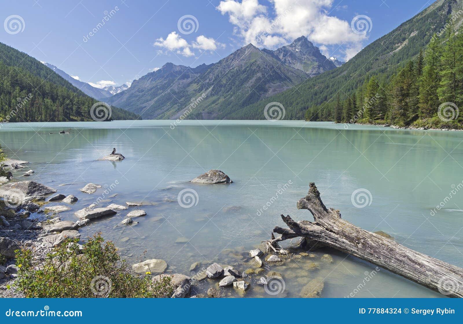 Lago Kucherla Montañas De Altai, Rusia Foto de archivo