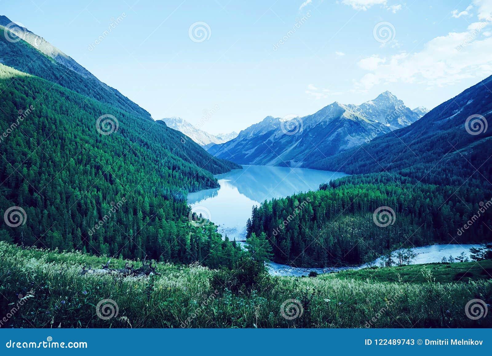 Lago Kucherlinskoe mountain de cima de, Altay, Rússia Montanha bonita com água de turquesa entre as montanhas no taiga