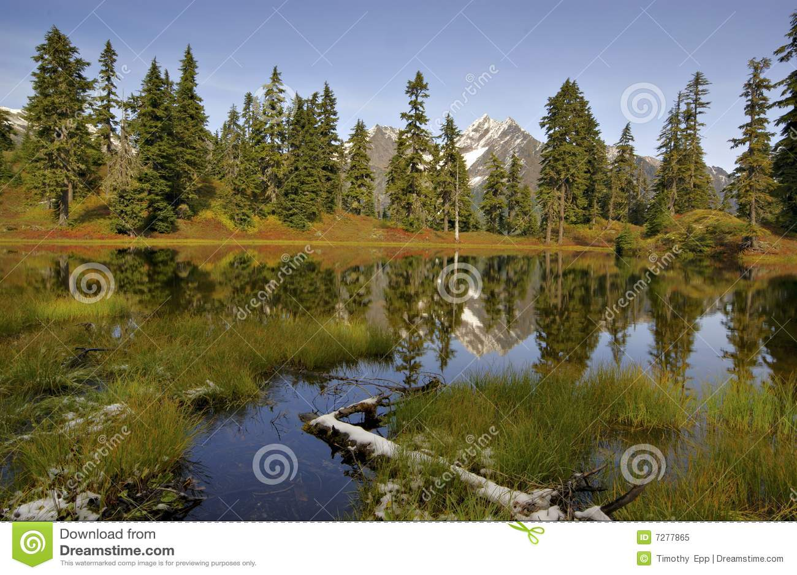 Lago Laughington en otoño
