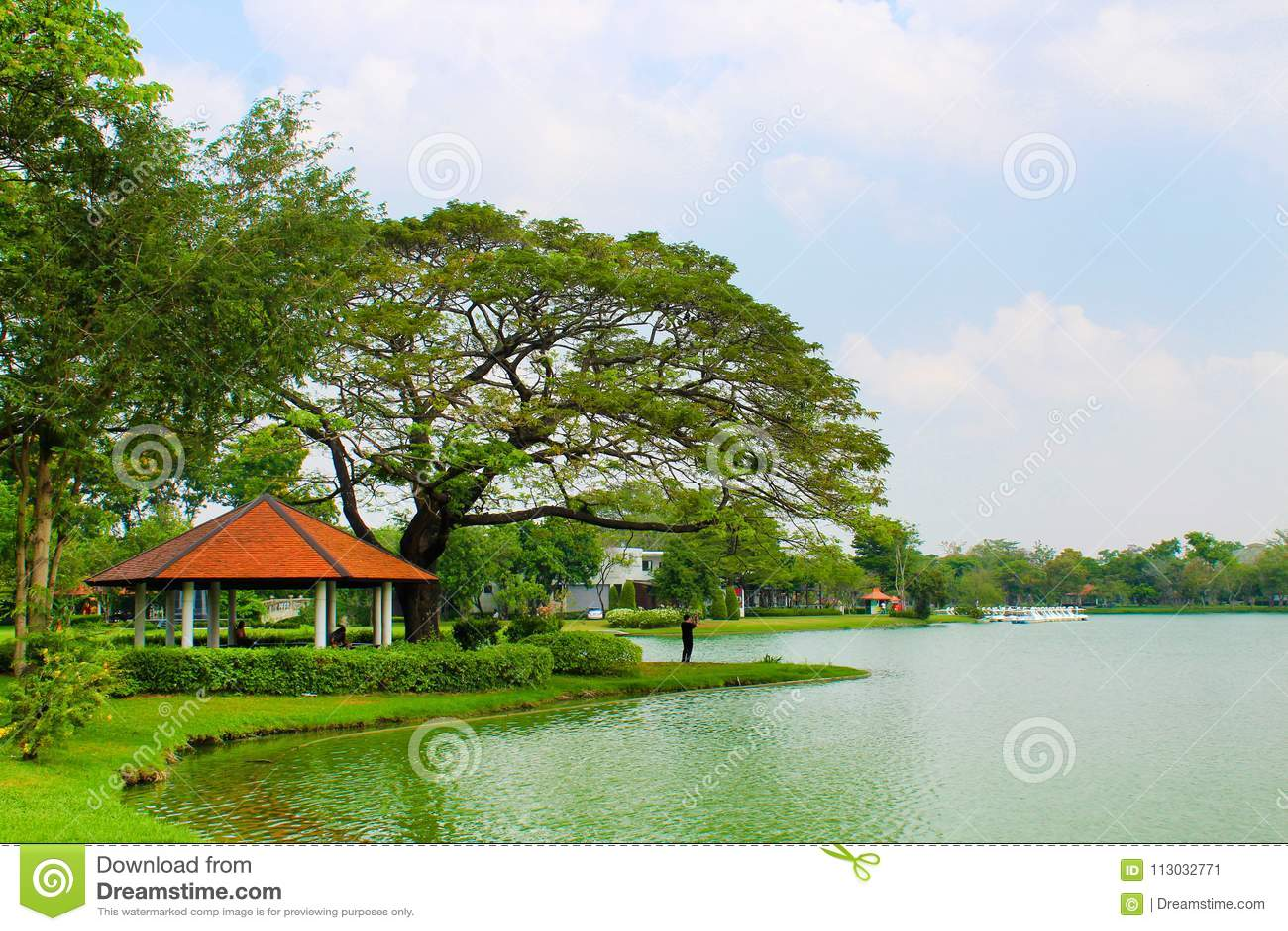 Lago Lumpini en el parque de Lumpini, Tailandia