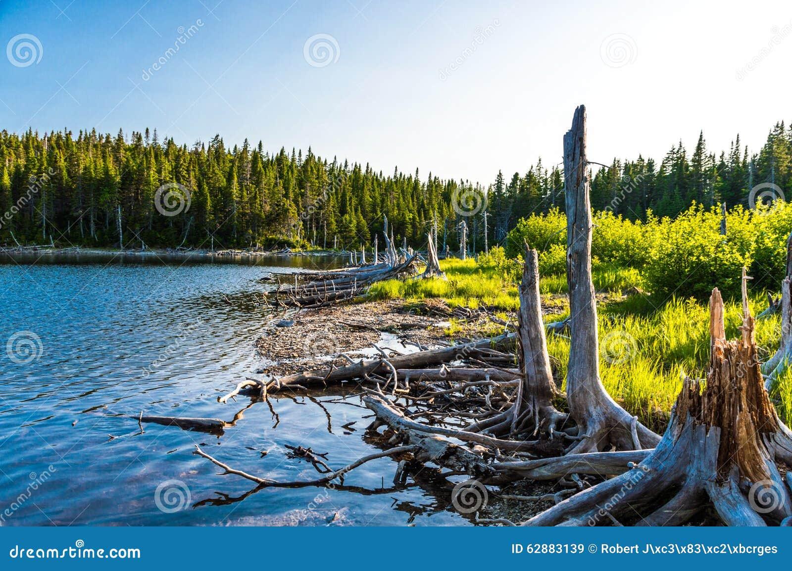 Lago magnífico en el parque nacional de Forillon