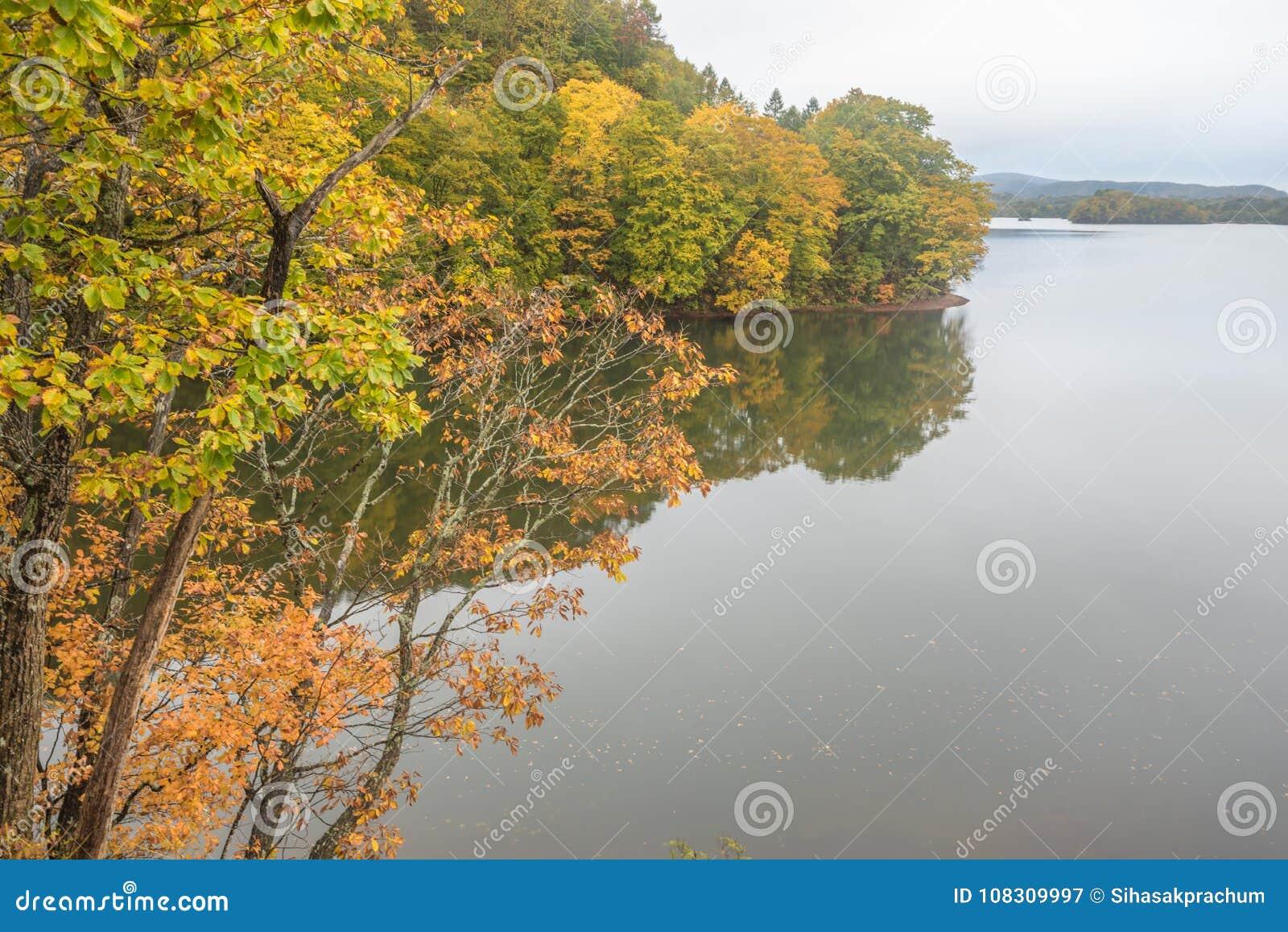 Lago nature in autunno