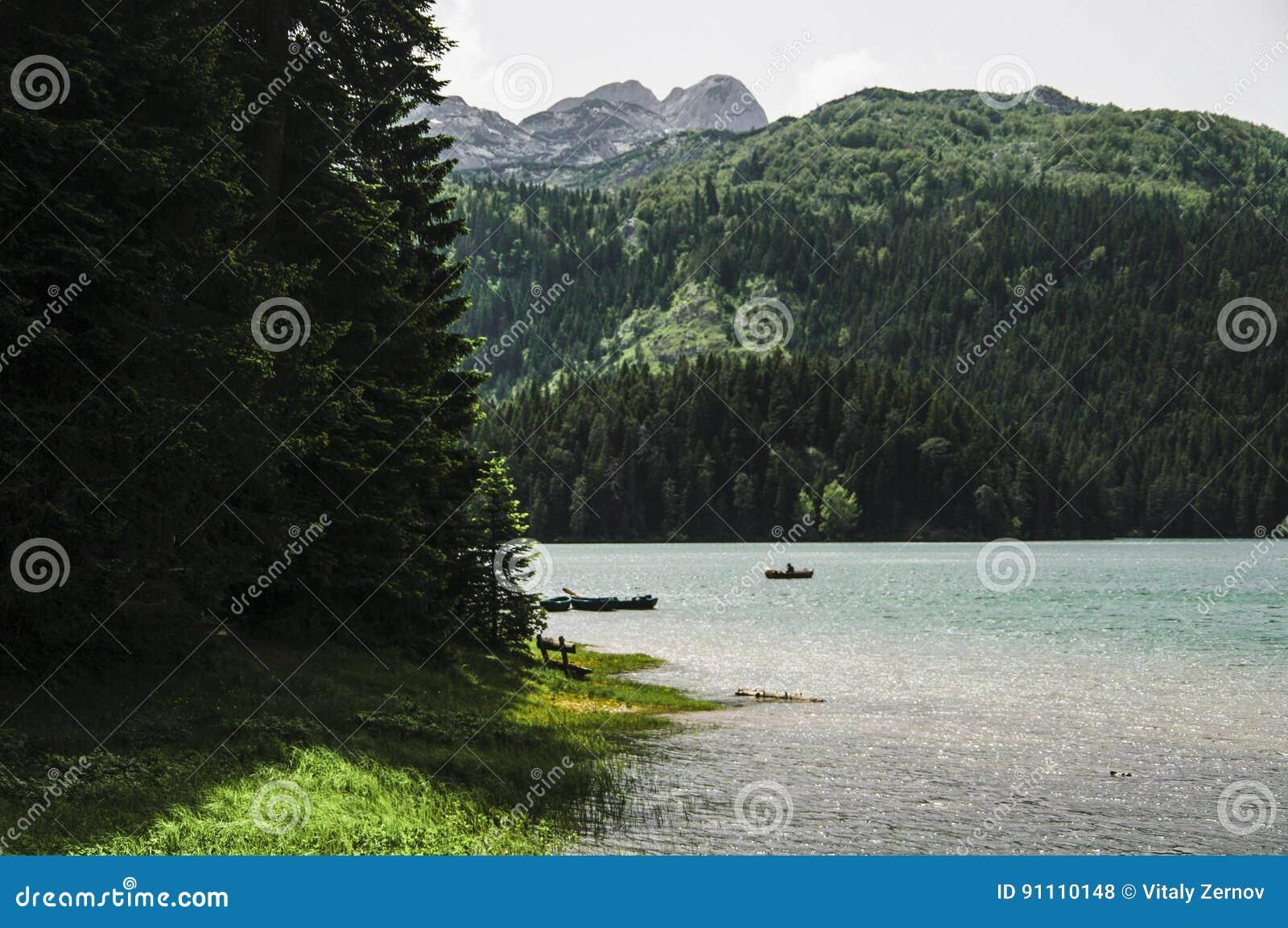 Lago negro en parque nacional