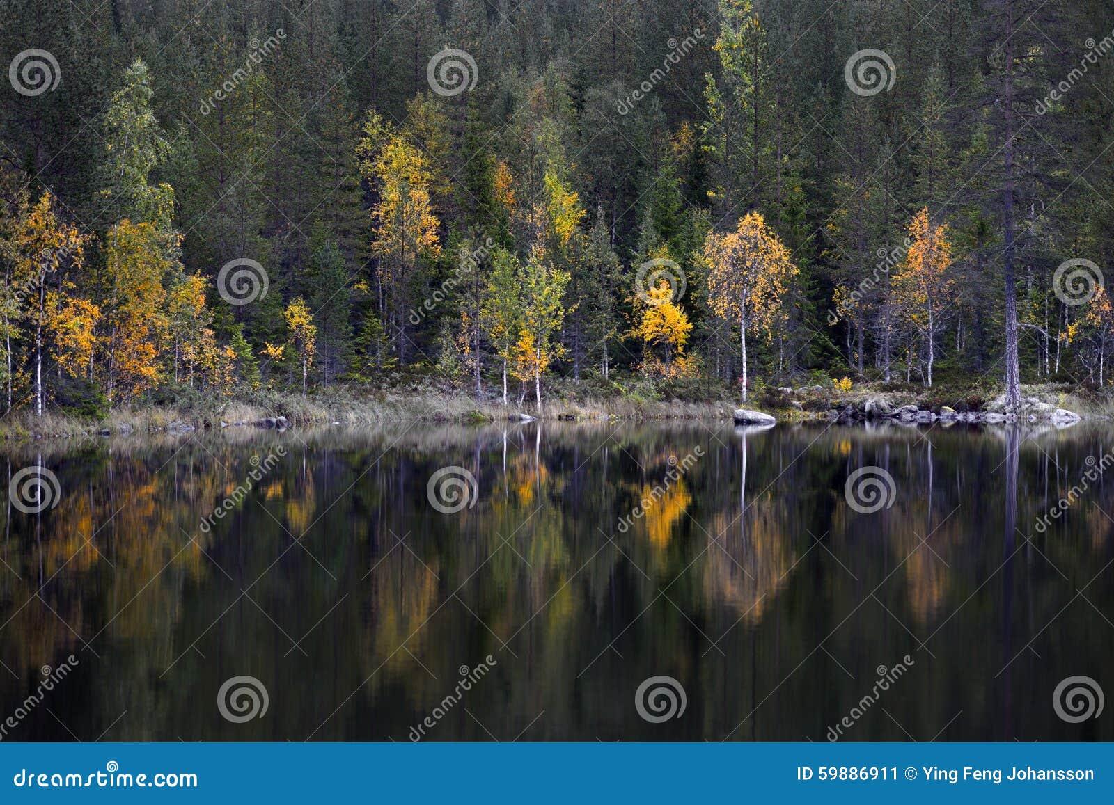 Lago no outono