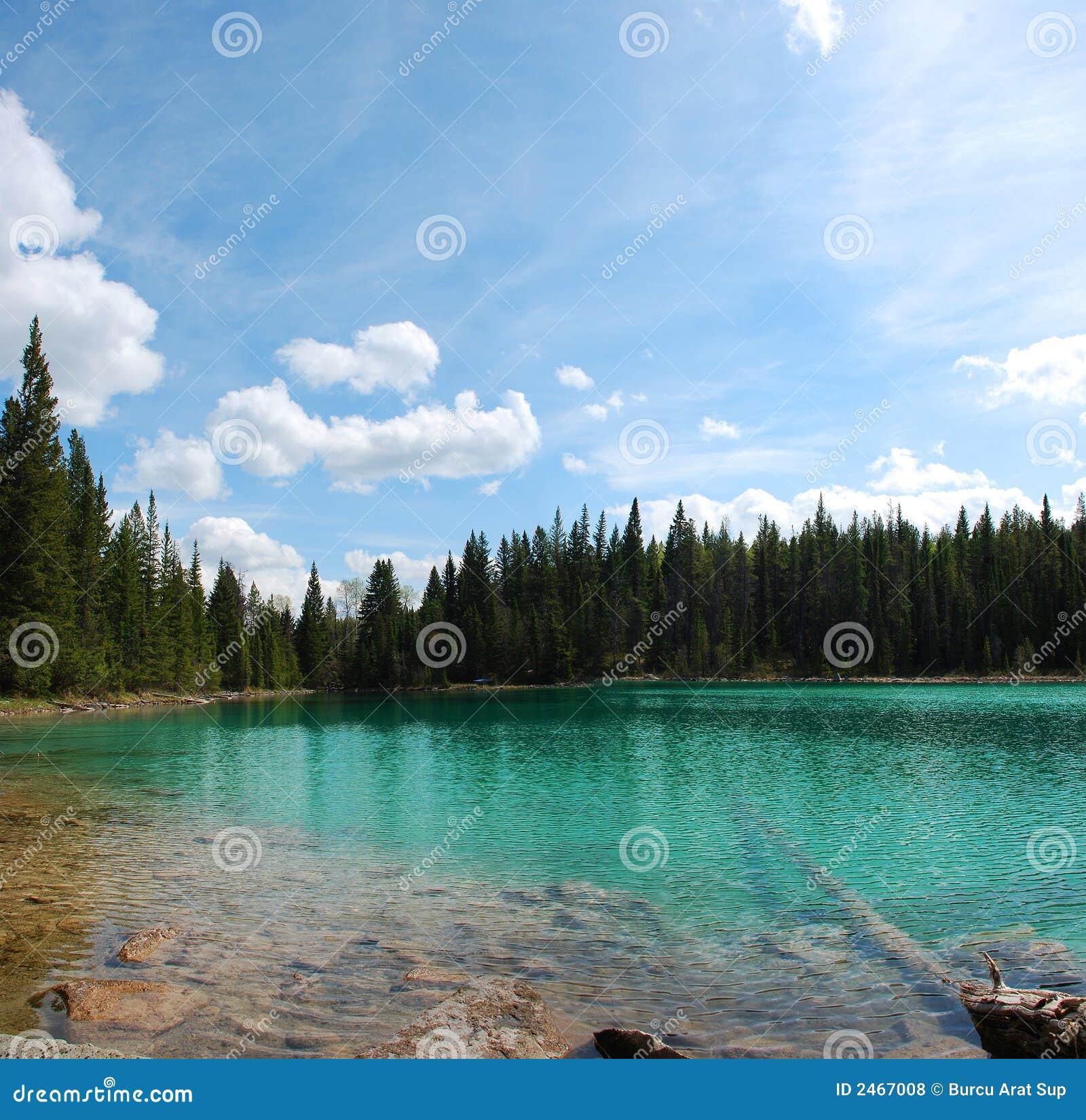 Lago panorámico