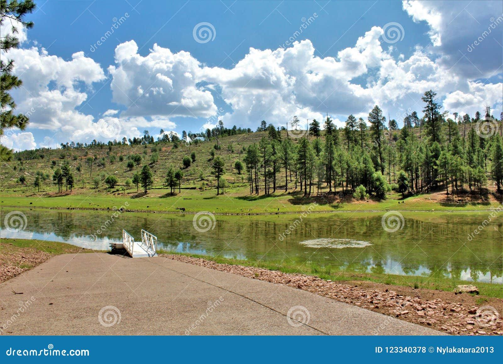 Lago preto canyon, Navajo County, o Arizona, Estados Unidos, floresta nacional de Apache Sitegreaves