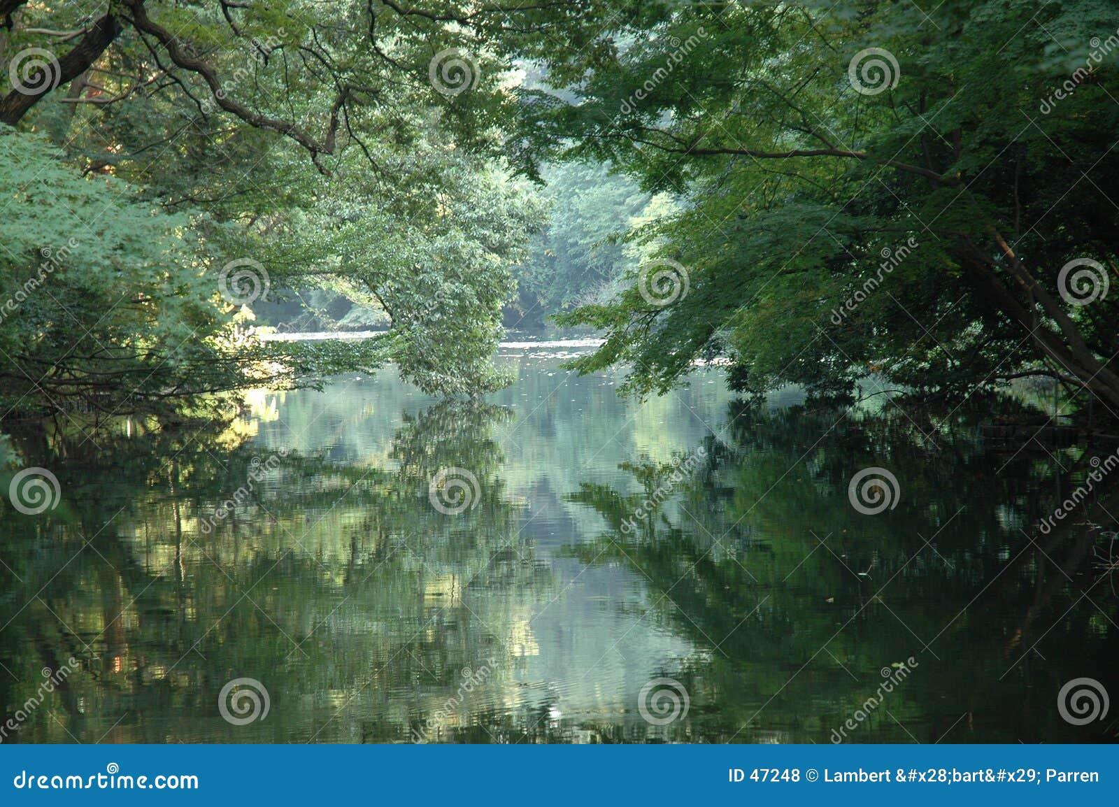 Lago romántico