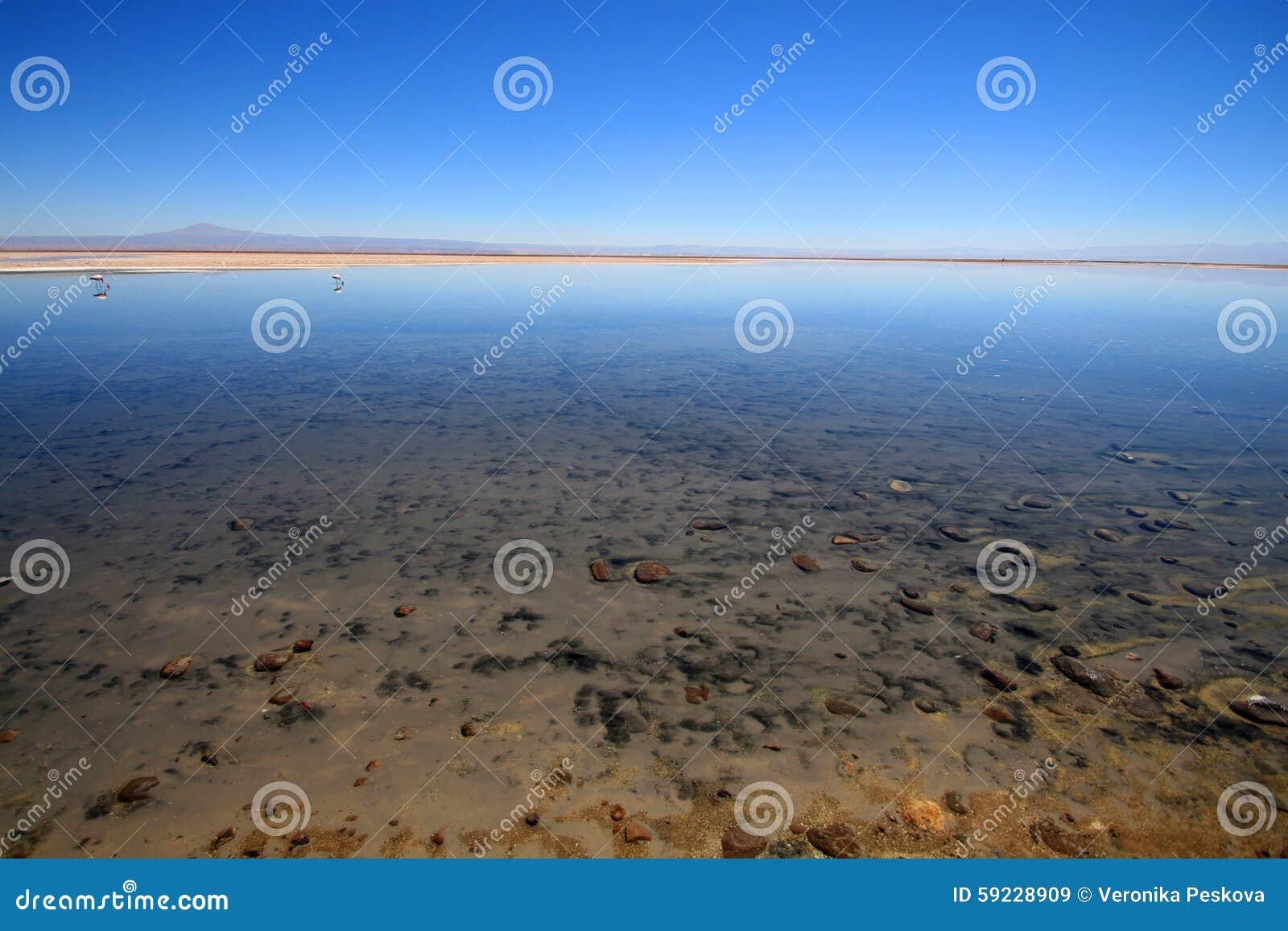 Lago salado en el desierto de Atacama