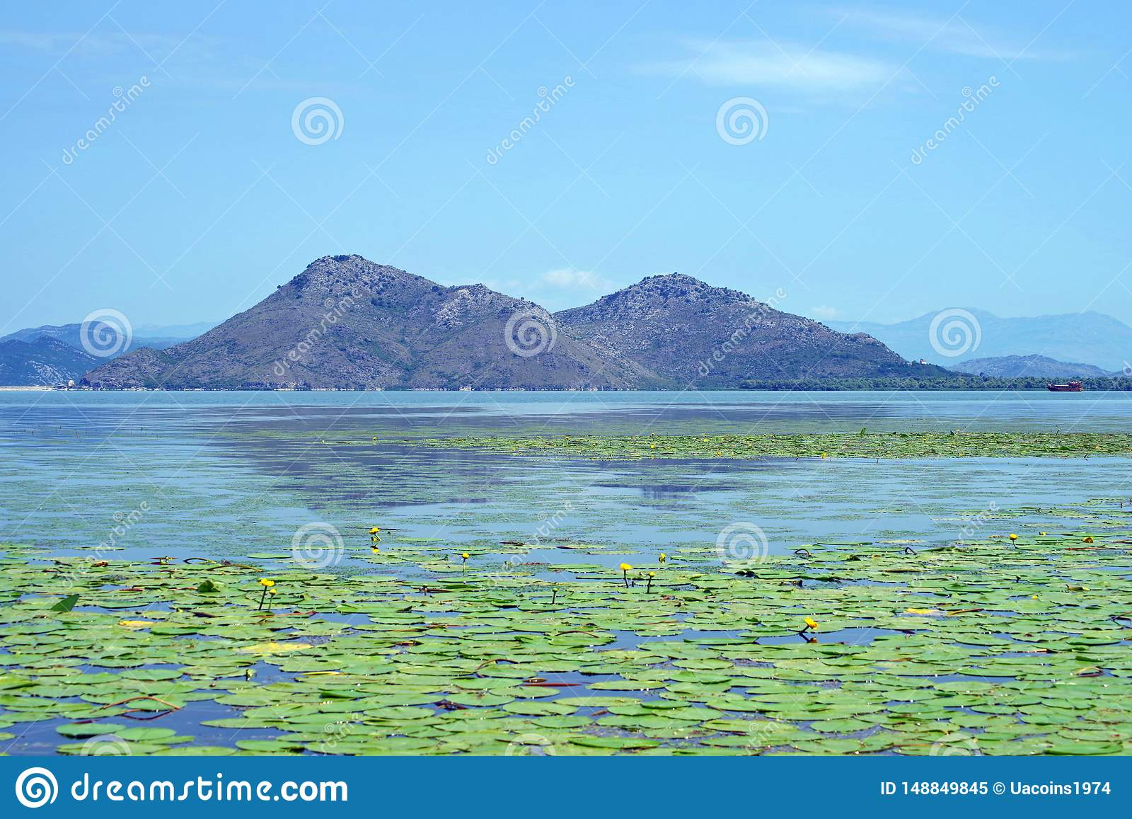Lago Skadar reserve em Montenegro