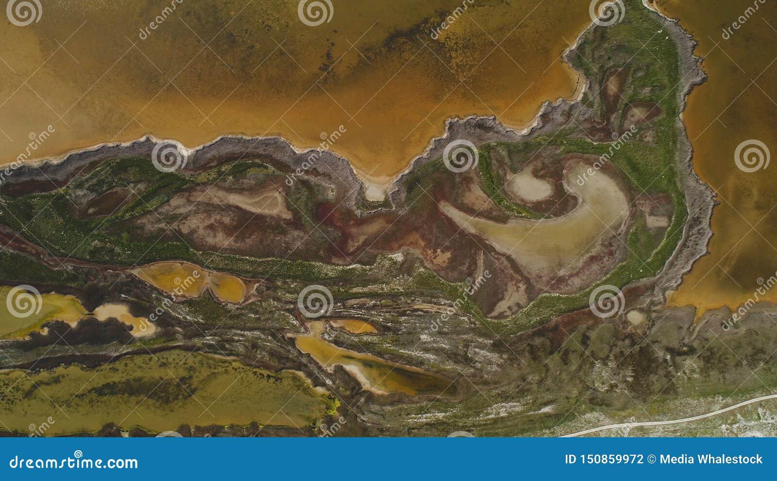 Lago sporco brown con la riva modellata colpo Vista superiore di superficie modellata delle rive paludose e del lago ammuffito di
