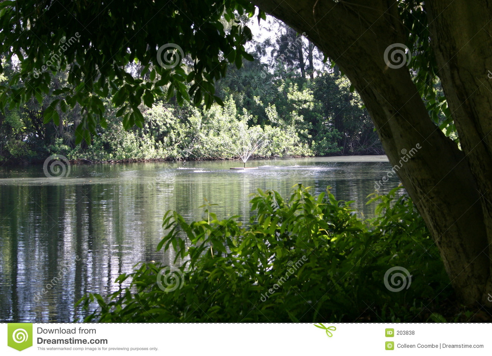 Lago su un pomeriggio di estate