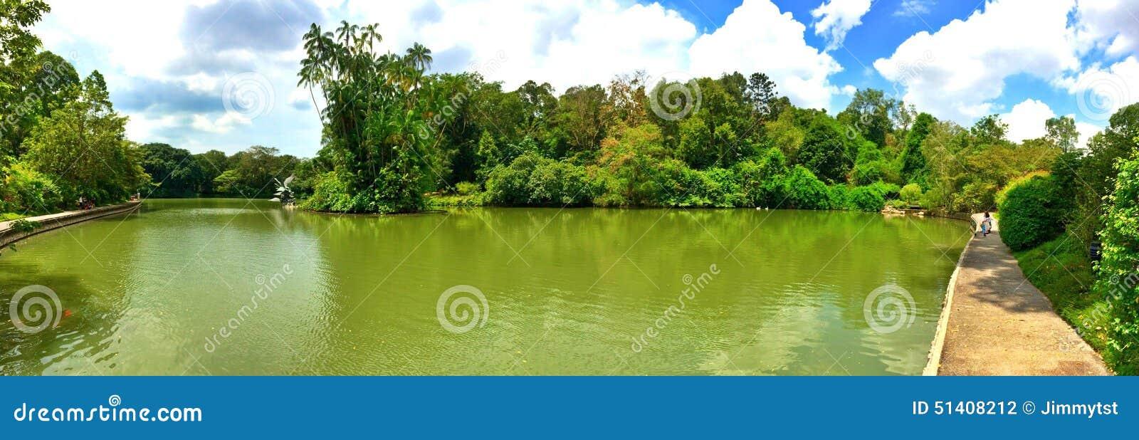 Lago swan, jardins botânicos, Singapura