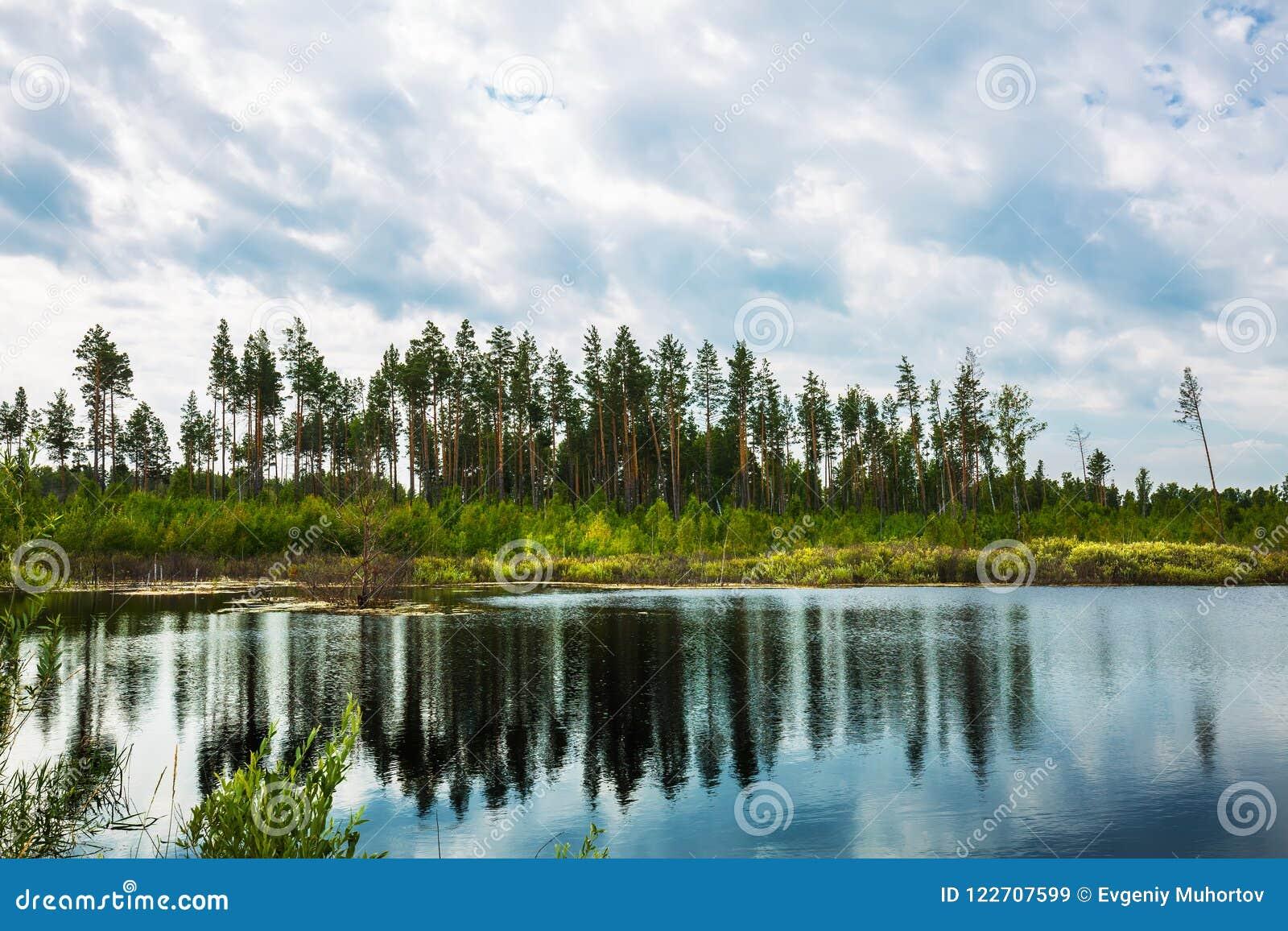 Lago Taiga Sibéria, Rússia