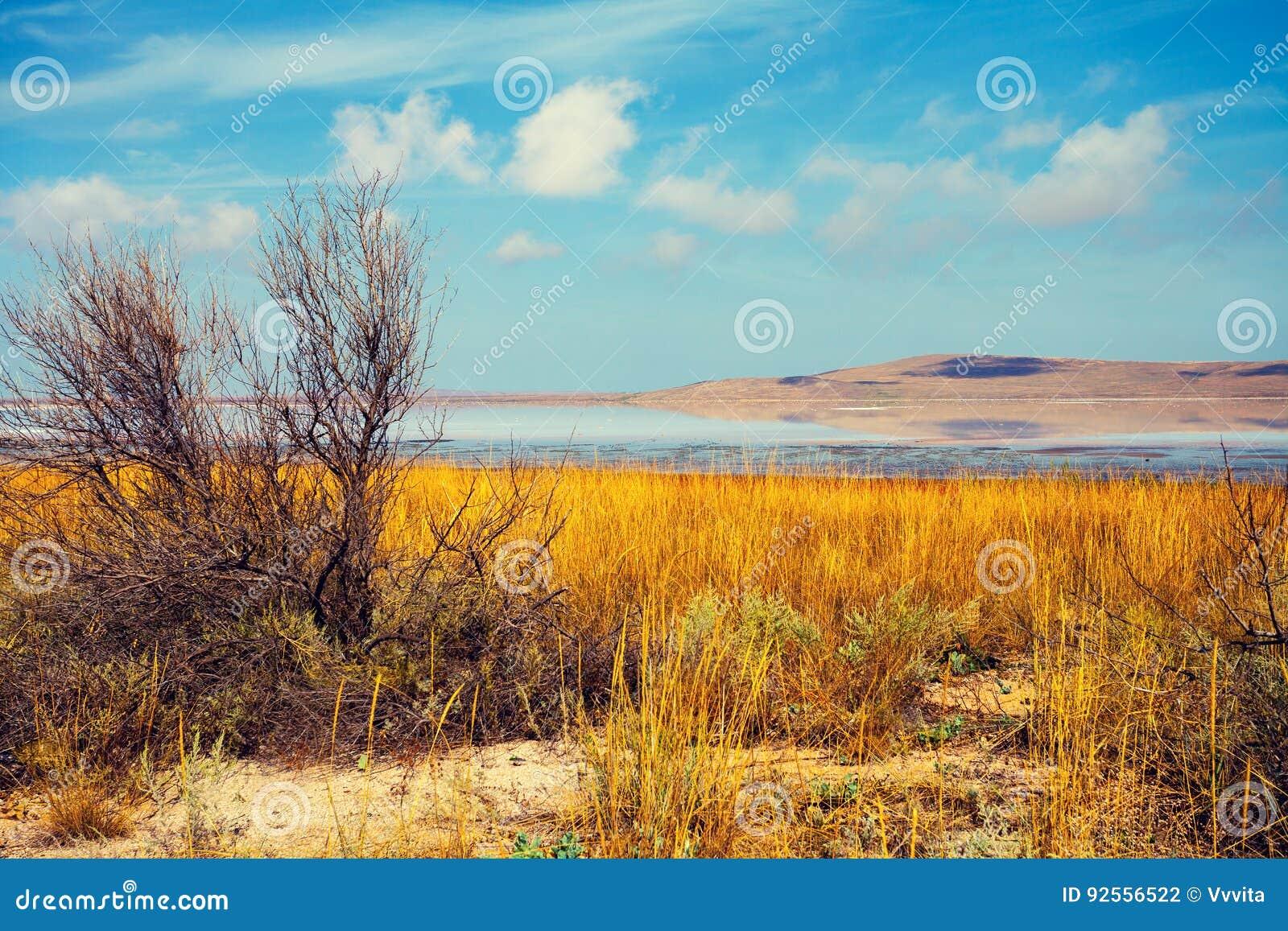 Lago in un deserto