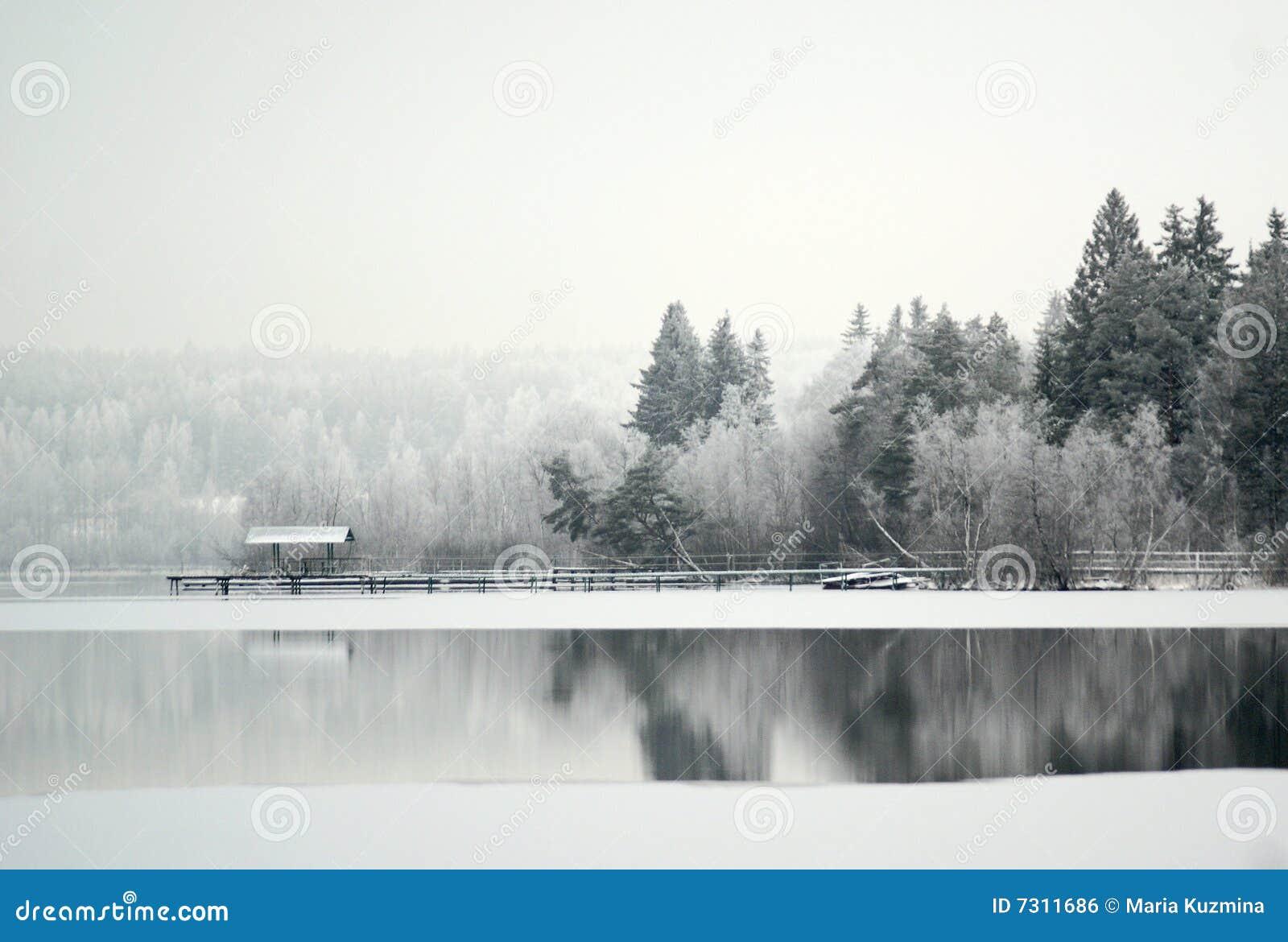 Lago in una neve