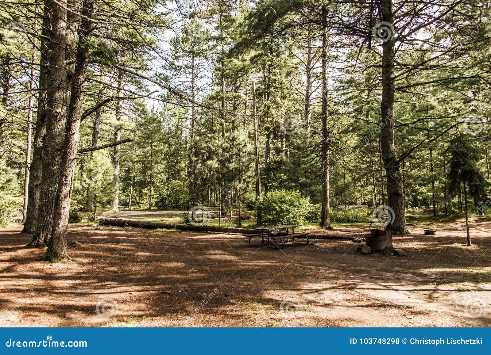 Lago vazio campground do campista da barraca da paisagem natural bonita Canadá da floresta do parque nacional do Algonquin de doi